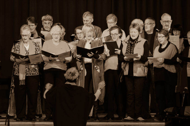 Vicki's Martinborough Choir